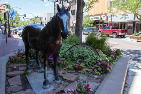 Horse Statue Downtown Casper Wyoming